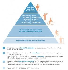 humanphysio,sport,santé,espacephysioperf,cardiologie,obésité,prévention